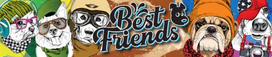 BestFriends Banner 555x116 - Best Friends Flavor Shots 100ml – Jeff